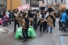 Raaber Faschingszug 2012 Bild_33