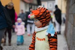 Kinder-Faschingszug_Raab_2018-02-03_Bild_064
