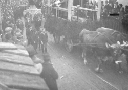 Fasching in Raab historisch Bild_23